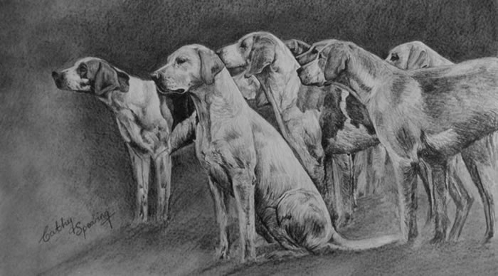 Cattistock Hounds